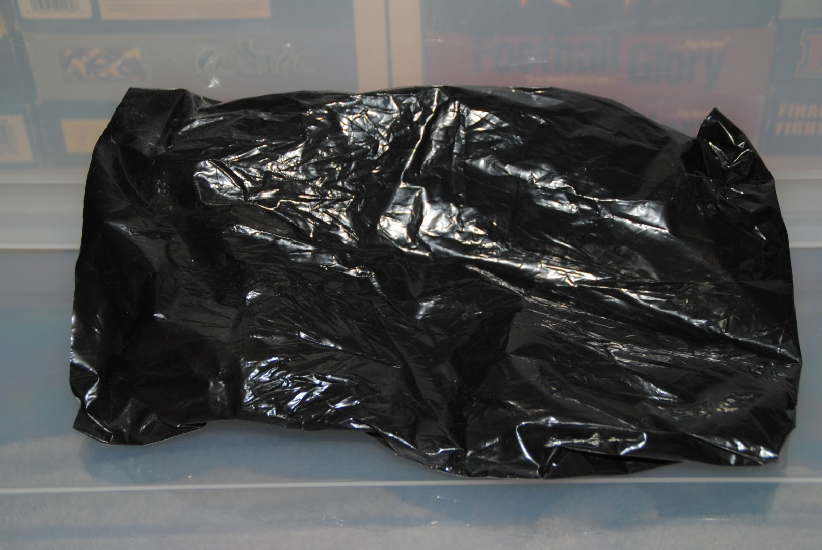 Body Bag , what was inside it?